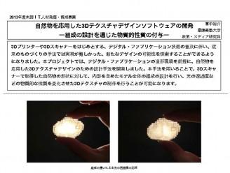 2013冨中裕介(概要)_サムネイル